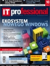IT Professional 10/2012