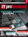 IT Professional 9/2013