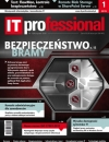 IT Professional 1/2015