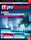 IT Professional 1/2018