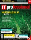IT Professional 10/2018
