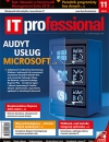 IT Professional 11/2019